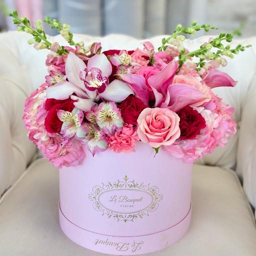 pink spring beauty orlando