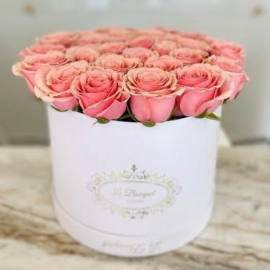 orlando pink roses