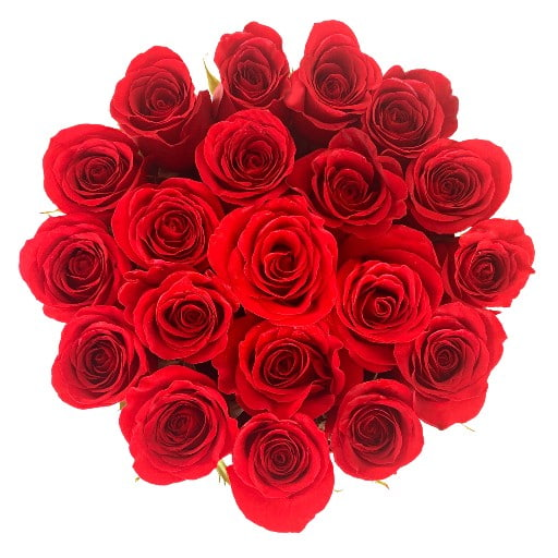 Deliver Roses Orlando