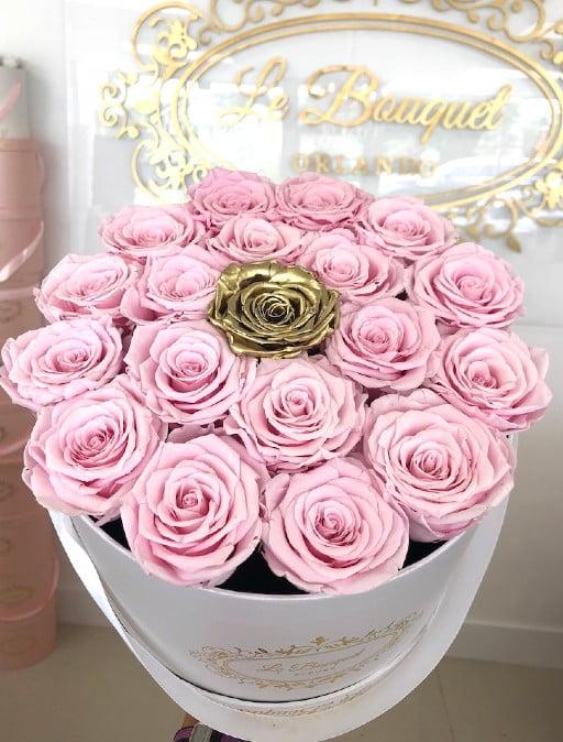 Pink Everlasting Roses Orlando