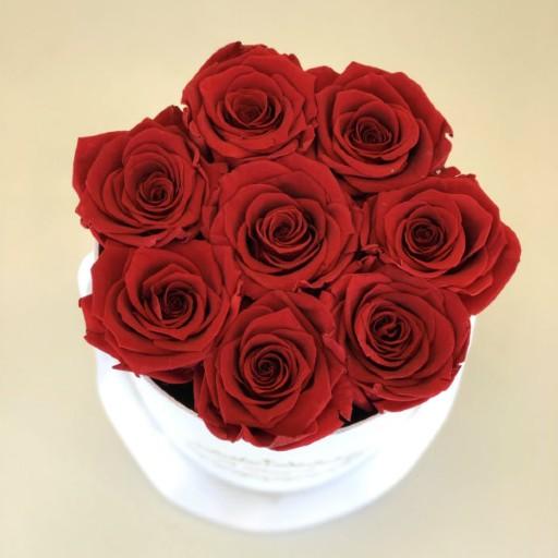 Red Roses Orlando