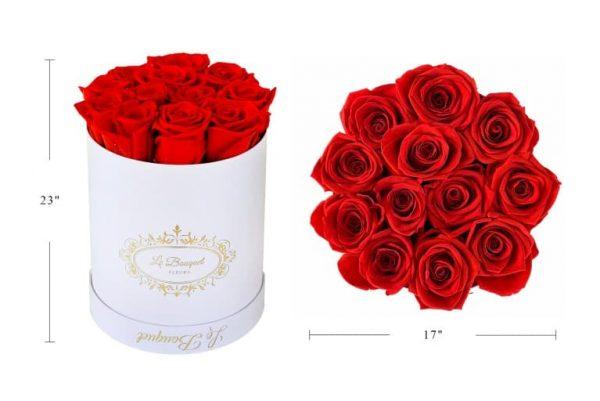 Roses Measurements Orlando