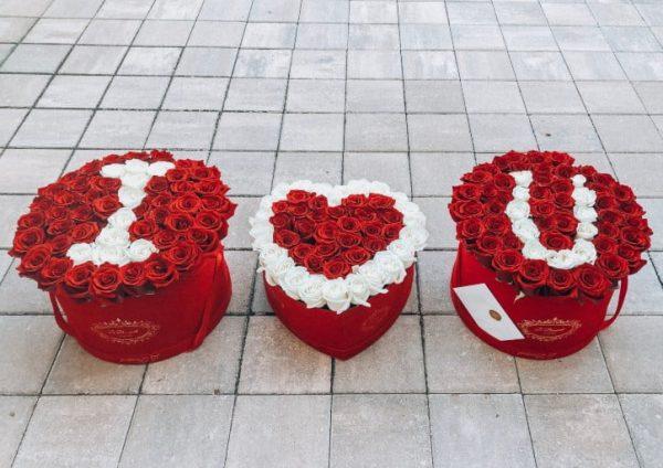 Roses Valentines Orlando
