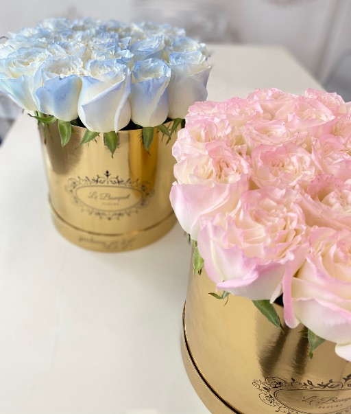 airbrushed roses orlando fl
