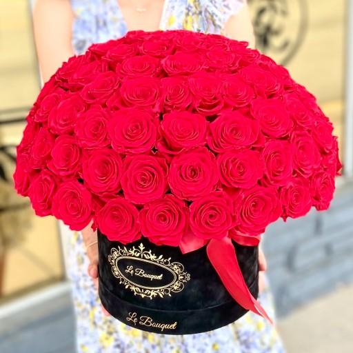 100 everlasting roses orlando