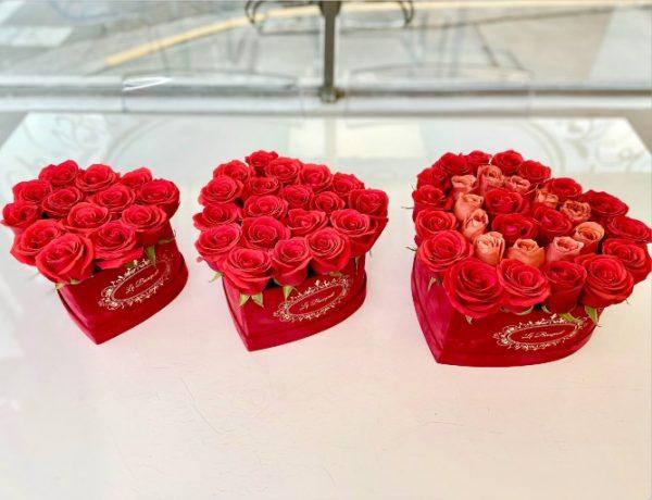 Roses Heart Orlando