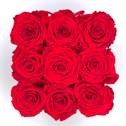 everlasting roses cube orlando fl