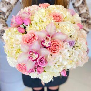 spring beauty flowers orlando